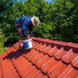Should I paint my terracotta roof? 2