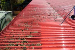 Roof Cleaning Melbourne 5