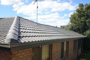 Roof Bedding and Pointing Repair 1